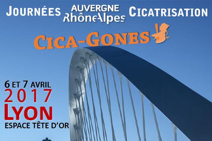 Journées Auvergne Rhône-Alpes Cicatrisation, Cica-Gones