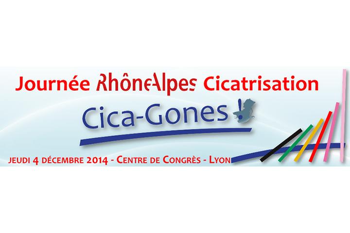 Les Journées Cica-Gones 2014
