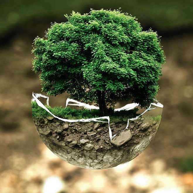 Développement durable CBA