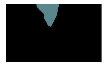 Logo In'DI